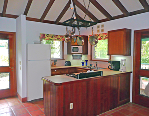 St John USVI cottage Cactus Flower kitchen has all the conveniences of home and great views
