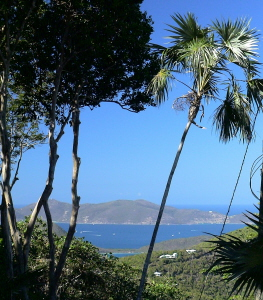 St John Rental Home Tree Tops ocean views to other islands